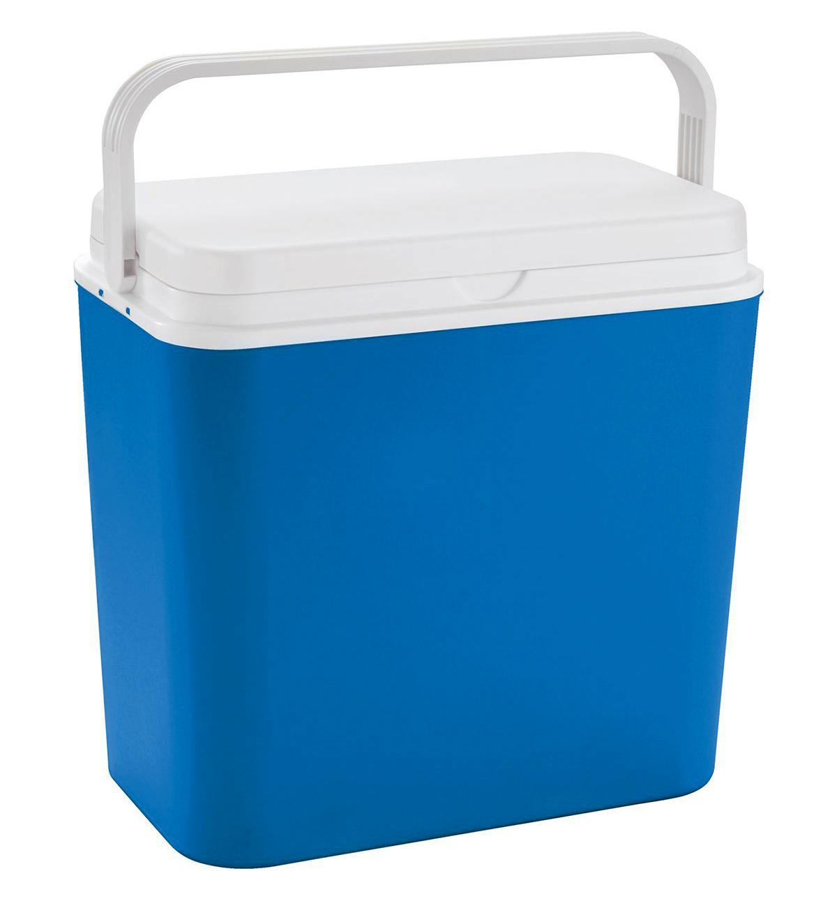 Хладилни чанти/Пълнители (9)